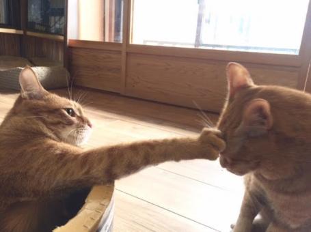 友達と喧嘩